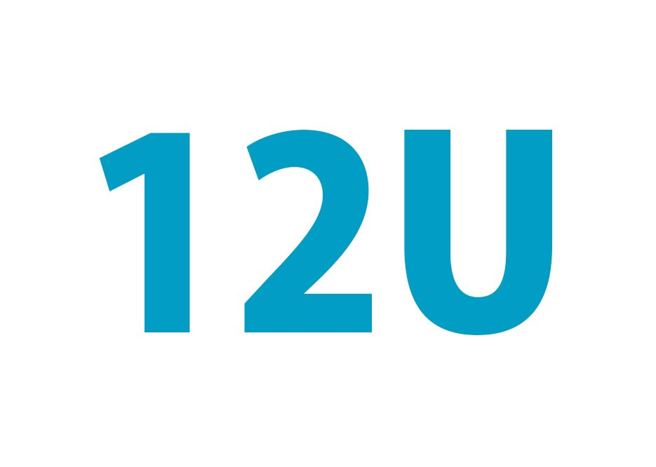 12U Wand Patchkast