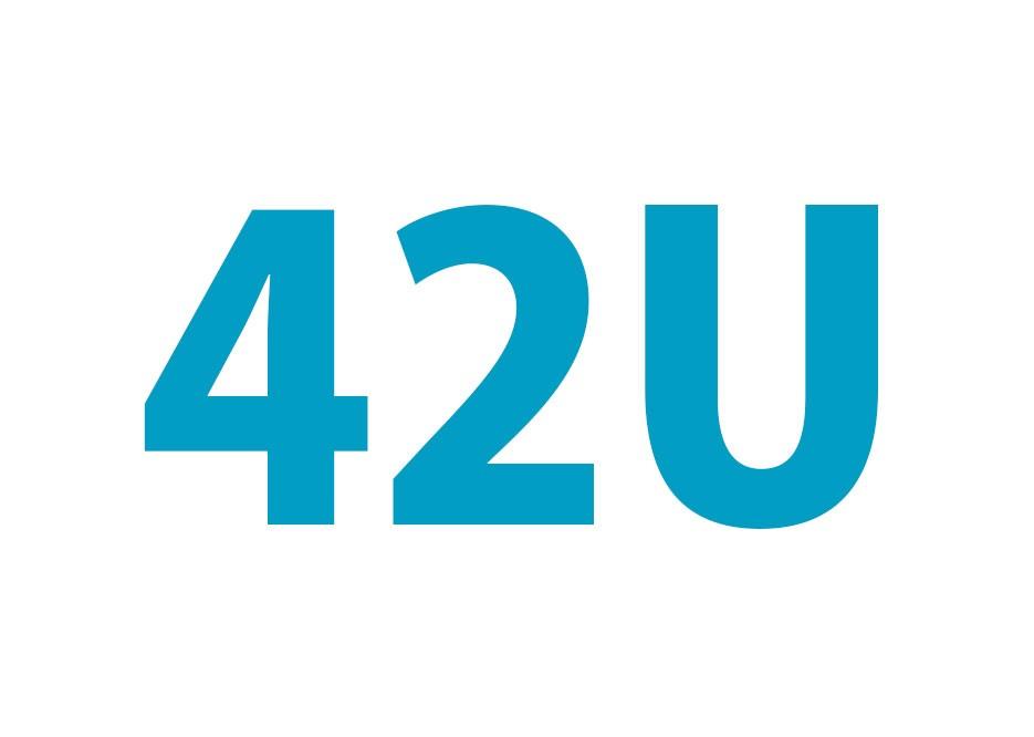 42U Patchkast